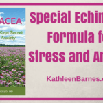 Special echinacea formula for stress and anxiety
