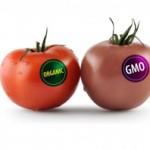 How to Identify GMO Frankenfoods