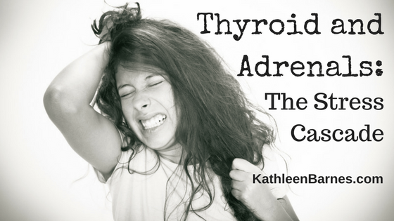 Thyroid and adrenals: The Stress Cascade