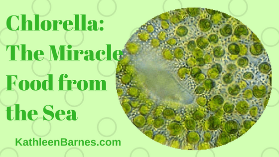 Chlorella: The Miracle Food from the Sea