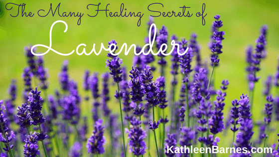 The Many Healing Secrets of Lavender