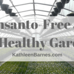 Monsanto-free and bee healthy gardens