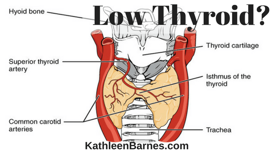 Low Thyroid