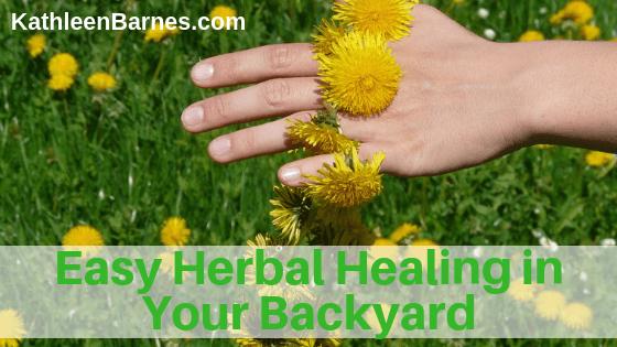 Easy Herbal Healing From Your Backyard Kathleenbarnes Com